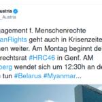 Die Pflanzereien des Herrn Schallenberg (ÖVP)